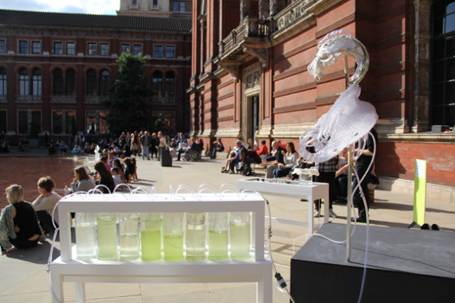 The Algae Opera by After Agri