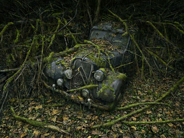 ParadiseParking 08 peterlippmann 640x480 Paradise Parking, Beautiful Photos of Abandoned Cars Decaying in Nature by Peter Lippmann