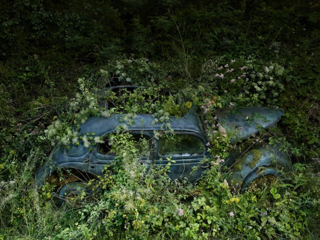 ParadiseParking 15 peterlippmann 640x479 Paradise Parking, Beautiful Photos of Abandoned Cars Decaying in Nature by Peter Lippmann