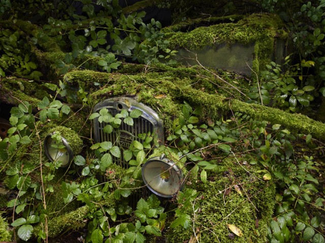 ParadiseParking 18 peterlippmann 640x479 Paradise Parking, Beautiful Photos of Abandoned Cars Decaying in Nature by Peter Lippmann