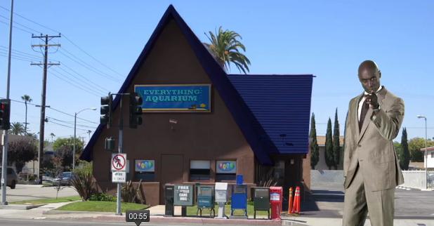 Everything Aquarium