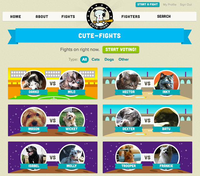Cute-Fight, Online Game Pits Real-Life Pets Against Each Other