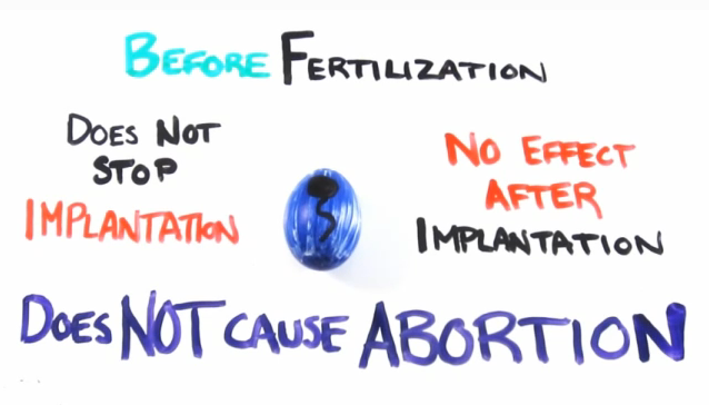 Does not cause abortion