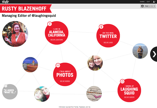 Vizify for Blazenhoff