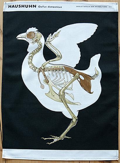 chicken skeleton tea towel
