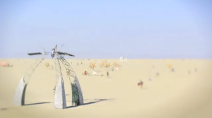 A Burning Man for Ants