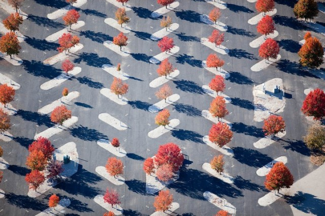 Aerial Photos by Alex MacLean