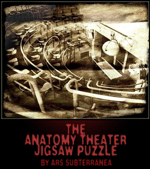 Anatomy Theater Jigsaw Puzzle by Ars Subterranea