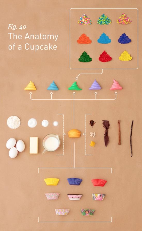 antatomy-cupcake