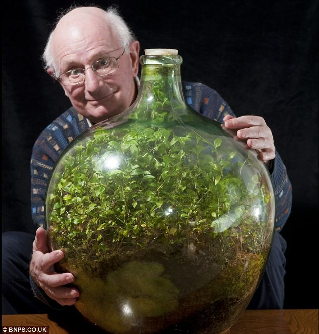 53 Year Old Bottle Garden