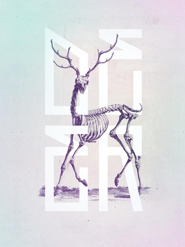 Bone - Anatomy Illustrated by Josip Kelava