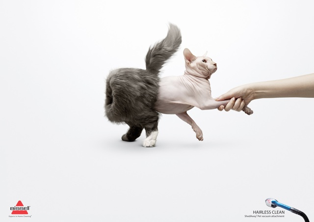 Vacuum Cleaner Ads Featuring Inside Out Cats And Dogs