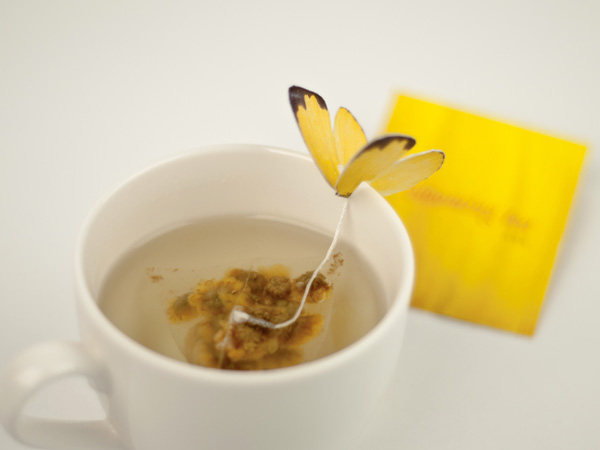 Blooming tea concept by Yena Lee