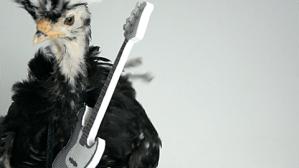 Chicken on Guitar