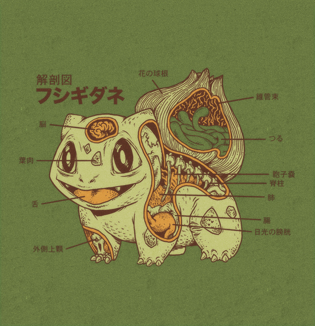 Bulbasaur Anatomy by Ryan Mauskopf