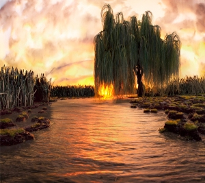 Strange Worlds by Matthew Albanese