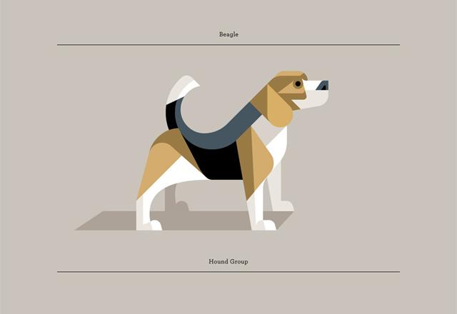 Beagle by Josh Brill