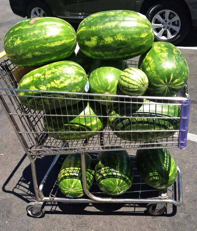 354 lbs of watermelon