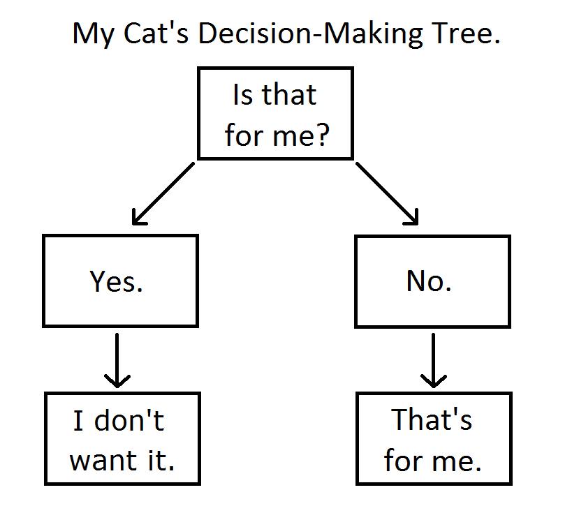 Cat Decision