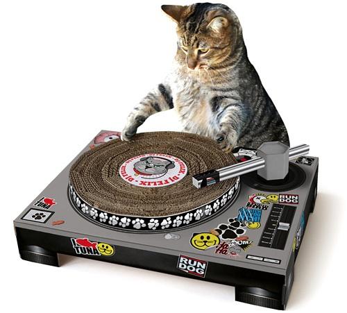 cat-turntable