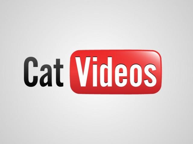 honest logos cat videos 640x480