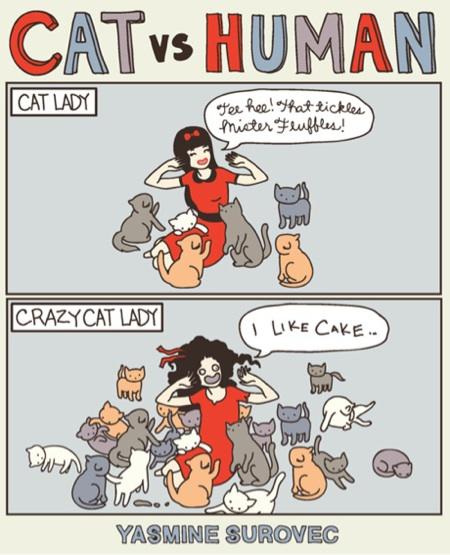 cat-vs-human
