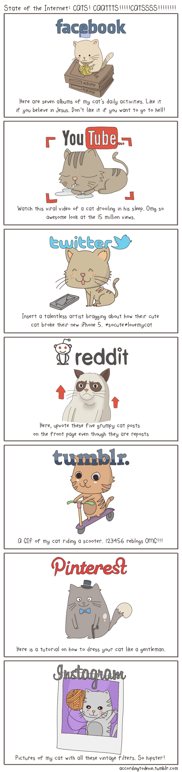 The State of the Internet Featuring Cats