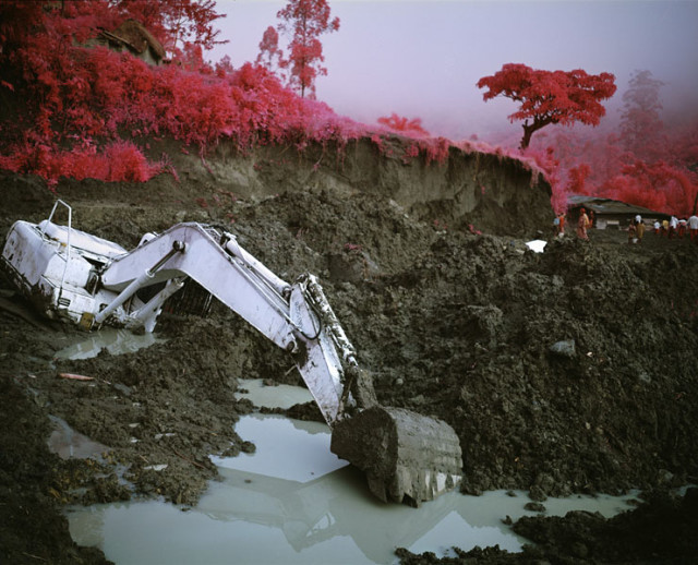 Infra by Richard Mosse
