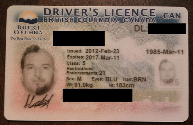 Crazy-haired Driver's License Photo