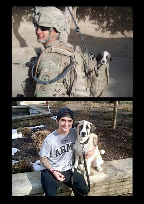 Man with dog