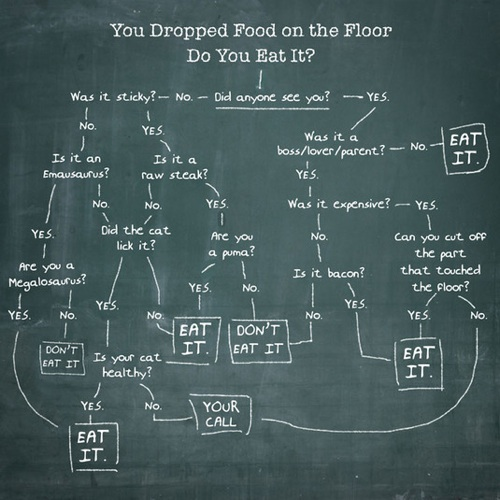 You Dropped Food on the Floor. Do You Eat It?