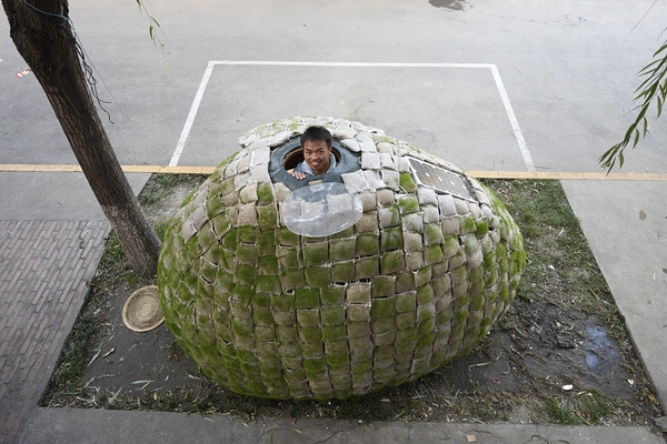 Egg Shelter