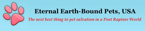 eternal-earth-bound-pets