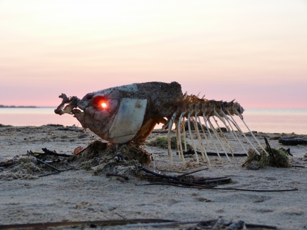 Sunrise Through Dead Fish Eyes by Mike Dotsch