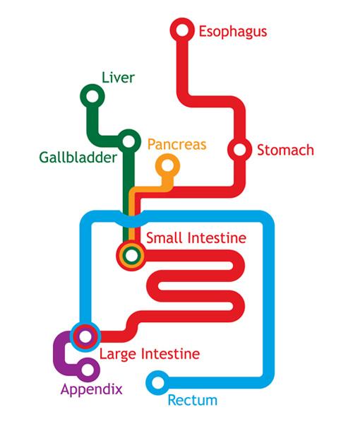 Gastrointestinal Metro
