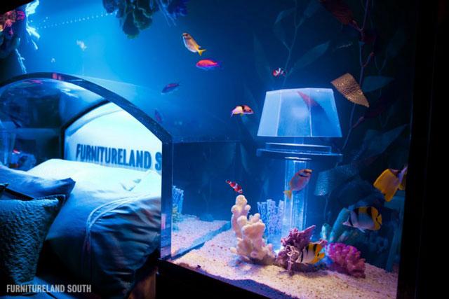Aquarium Headboard a massive custom-made seawater aquarium headboard