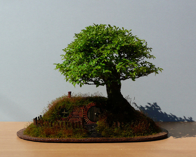 bag end bonsai
