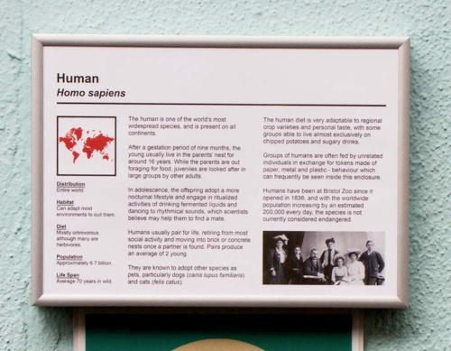 Human Exhibit