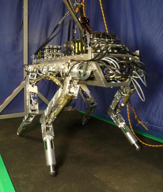 HyQ robot