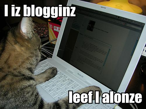 I iz blogginz