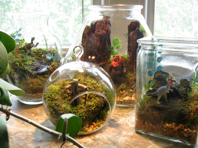 Star Wars Terrarium Worlds by Tony Larson