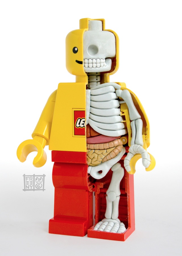 Lego Minifigure Anatomy Sculpture By Jason Freeny
