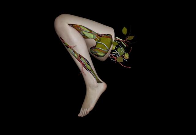 Growth, Destruction, Rebirth I by Caitlin Bates