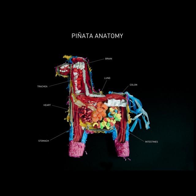 Piñata Anatomy
