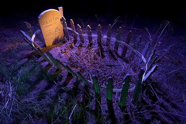 Night photos of the Presidio Pet Cemetery by Troy Paiva