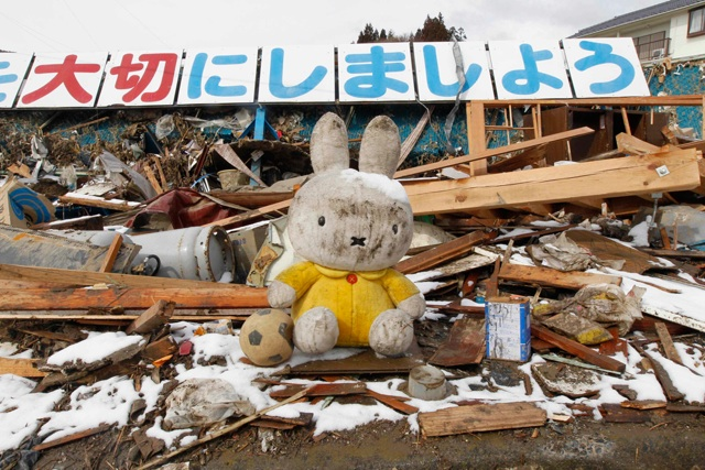 rabbit-japan
