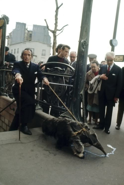 Salvador Dali takes his anteater for a stroll.