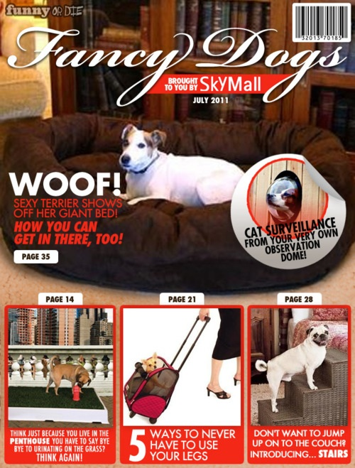 skymall-dogs