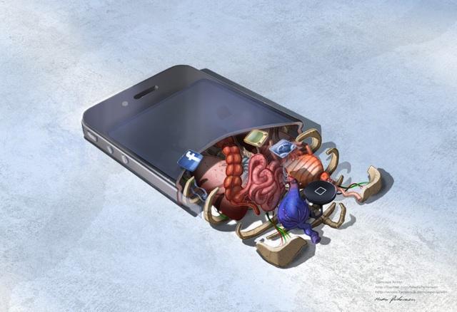 iPhone Anatomy