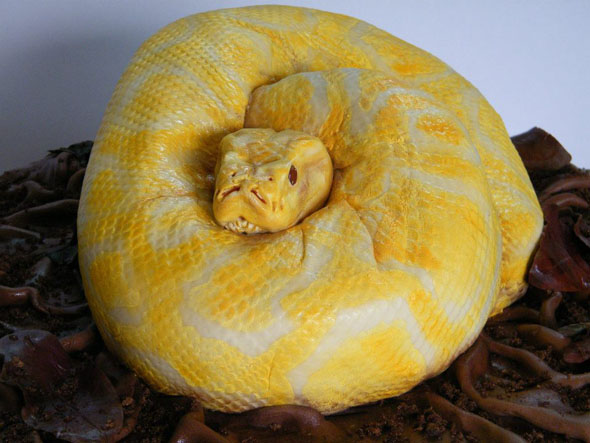 Anaconda Birthday Cake